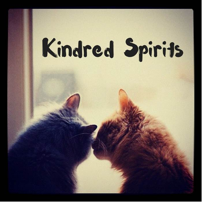 Kindred Spirits And Past Lives Kate Sitka